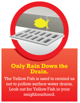 Healthy River Code - Only Rain Down the Drain